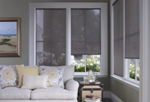 Alta Screen Shade - roller shades